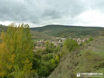 Parque Natural Sierra de Cebollera (Los Cameros) - Acebal Garagüeta;rutas senderismo madrid señali